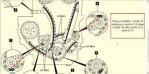 images(11).jpg
